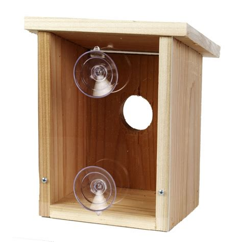 window nest view bird house