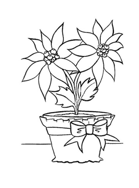 christmas flower    pot coloring page  printable coloring pages