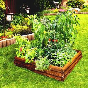 Raised Bed Vegetable Garden Layout – Outdoor Decorations