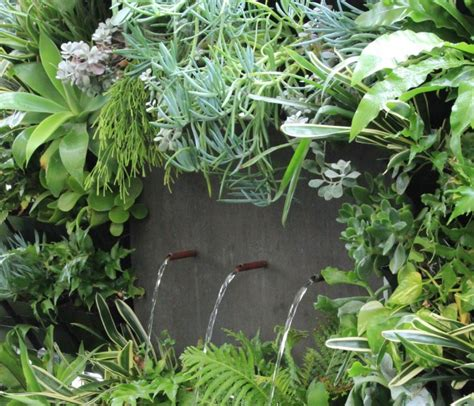 Vertical Garden Perth by Vertical Gardens For Efficient Planting In Perth