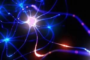 your brain is like 100 billion mini computers all working