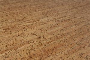 cork flooring toxic cork wood flooring highlands decorating center