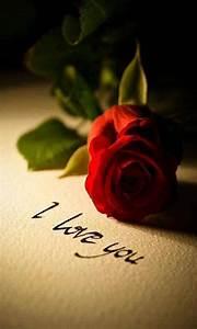 Red Rose Love U - 123mobileWallpapers.com