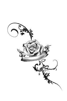 200+ Best Drawing Roses images | roses drawing, drawings