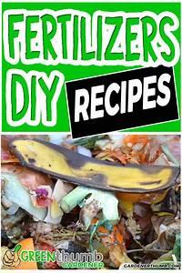 Homemade Fertilizer For Your Garden