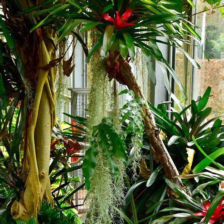 Botanischer Garten Augsburg Japan by Botanischer Garten Japan Garten Augsburg Aktuelle