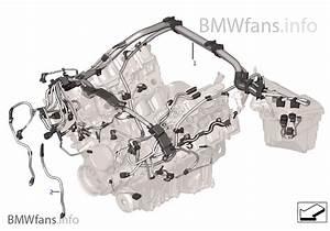 Engine Wiring Harness  Engine Module