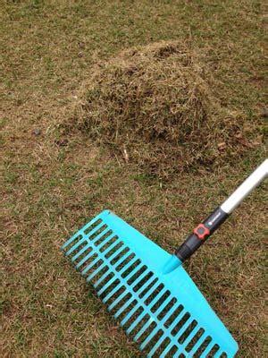 Rasen Nicht Vertikutieren by Rasenpflege Im Fr 252 Hjahr Tipps Zum Vertikutieren D 252 Ngen