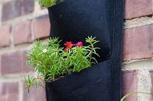 Vertikaler Garten Balkon : vertikaler garten auf dem balkon taschen oder flaschen bepflanzen ~ Frokenaadalensverden.com Haus und Dekorationen