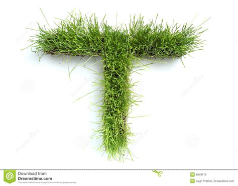 and numbers letter a made of grass stock letters made of grass royalty free stock images image
