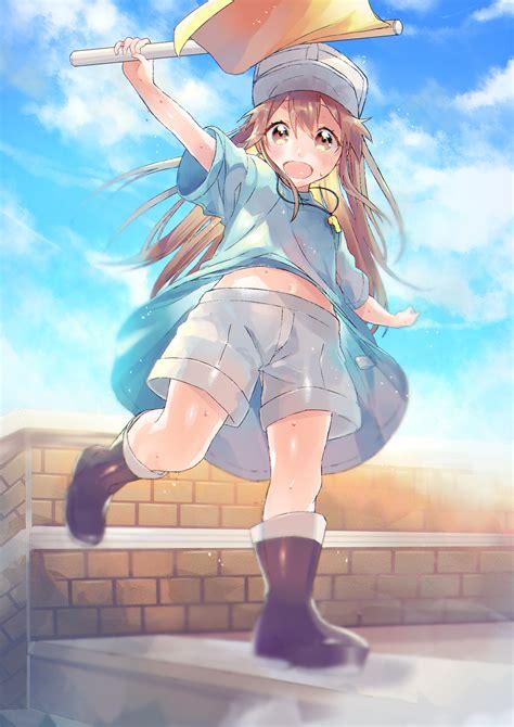 platelet hataraku saibou zerochan anime image board