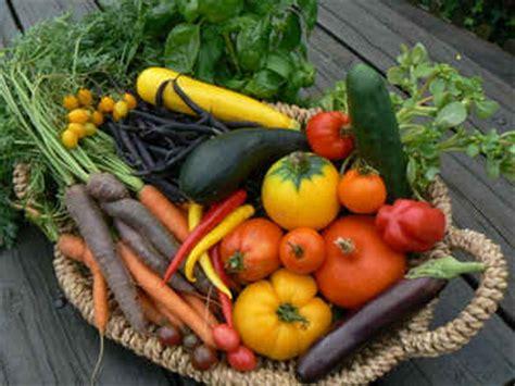 cuisine sauce blanche les légumes anciens légumes oubliés