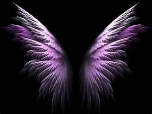 47, Angel, Wing, Wallpaper, On, Wallpapersafari