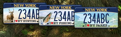Nys Boating License Online by Lifetime Sporting Licenses Nys Dept Of Environmental