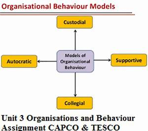 Organisational Behaviour Assignment Introduction Tips For Essays  Organisational Behaviour Assignment On Motivation Quotes Literary Devices  Essay Sample Essay For High School Students also Essay For English Language  Professional Business Plan Writers Nyc