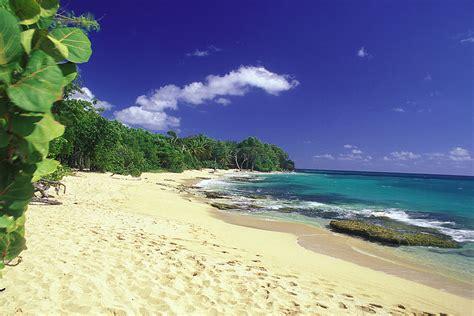 chambre vue sur mer plage anse desert martinique