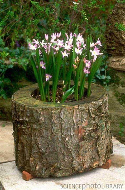 tree stump planters 16 reclaimed wood diy project ideas