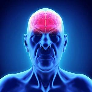 The Physiology Of Dementia  What U2019s Going On Inside The Brain