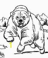 Coloring Bear Cave 2155 Divyajanani sketch template