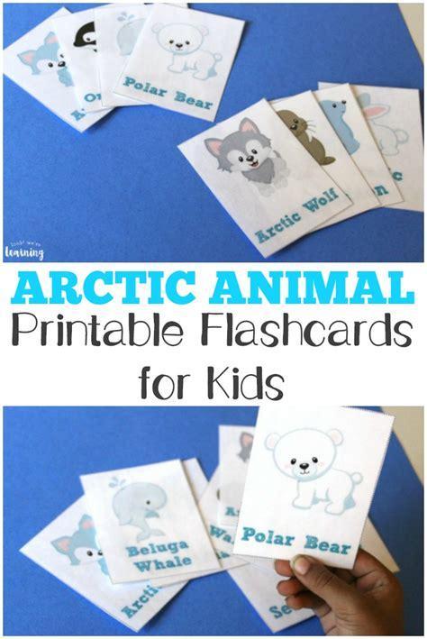 Free Printable Flashcards Arctic Animal Flash Cards