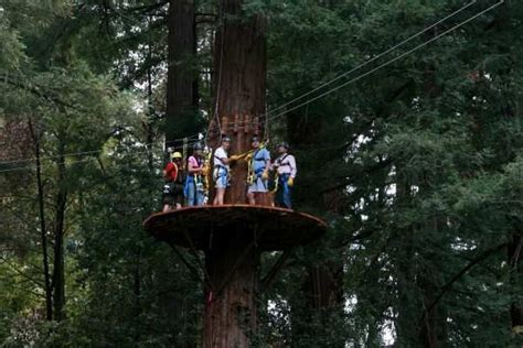 redwood canopy tours 17 best images about mount hermon on santa