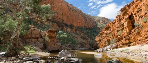 MacDonnell Ranges Outback Australia Campervan Hire   Book Now