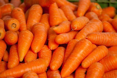 แครอท (Carrot) - Farm.co.th