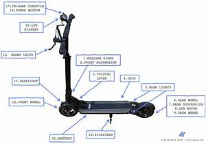 Complete Guide To Electric Scooters