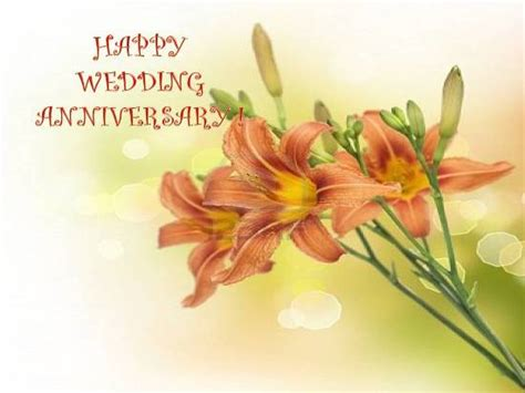 anniversary wishes      couple ecards greeting cards