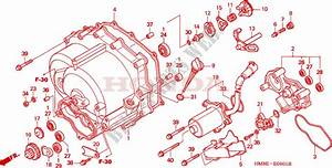 Front Crankcase Cover  Trx250te  For Honda Fourtrax 250