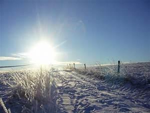 Sonne Im Winter : winter sonne gegenlicht kostenloses foto auf pixabay ~ Lizthompson.info Haus und Dekorationen