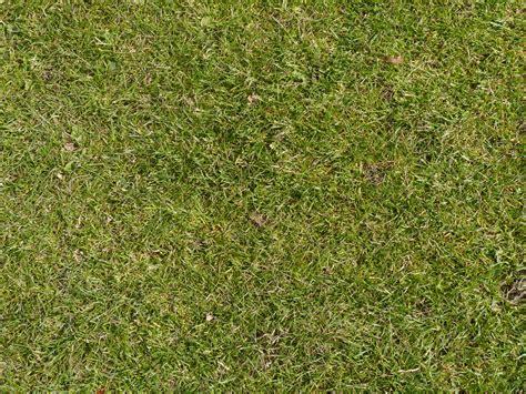 grass texture floor texture grass floor golf course background pattern stock photo high resolution textures seamless