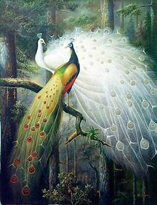 Peacock Oil Painting | India | Pinterest