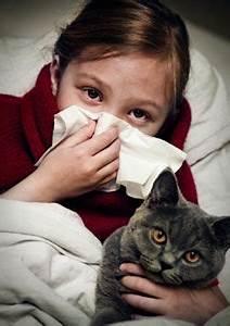 Allergia ai gatti: per guarire basterà un unico vaccino PourFemme
