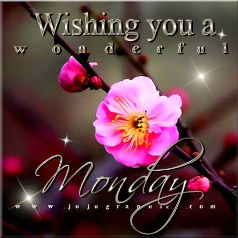 Wishing you a wonderful Monday   Graphics, quotes