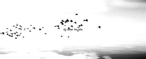 nightingales nest  nikki loftin