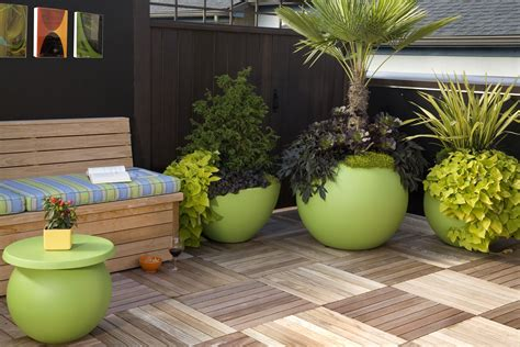 outdoor plants for pots how to decorate outdoor pots of plants interior