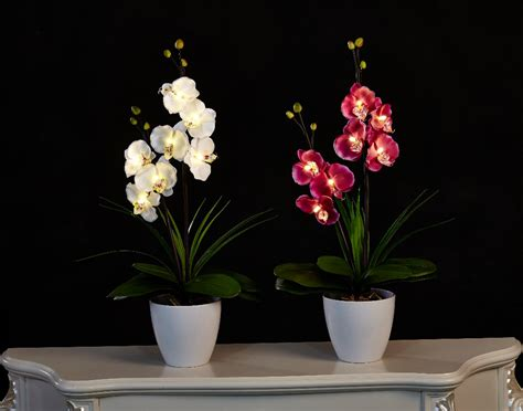 free shipping 20 quot 50cm led blossom orchid flower light
