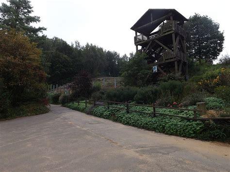 Aussichtsturm Bei Den Elefanten (zoo Neunkirchen) Der