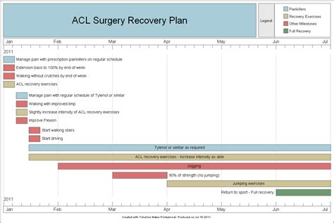 medical recovery timeline created  timeline maker pro