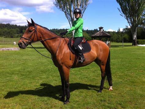 lessons riding horseback horse ride learn oregon levels
