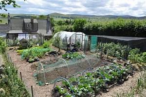 Selecting crops for survival gardens the prepper journal for Survival garden