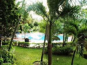Gartenanlage Mit Pool : bild gartenanlage mit pool zu hotel vista sol punta cana in bavaro ~ Sanjose-hotels-ca.com Haus und Dekorationen