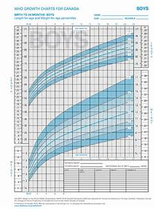 Pediatric Growth Chart Boy Cottage Country Reflections Book Review The A To Z Of