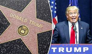 Donald Trump's Hollywood Walk of Fame star trashed by ...