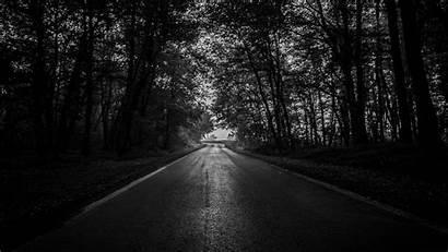 Forest Road Trees Dark 4k Bw Ultra