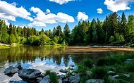 Finland Lakes and Forests