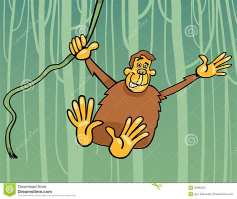 ape   jungle cartoon illustration stock image image