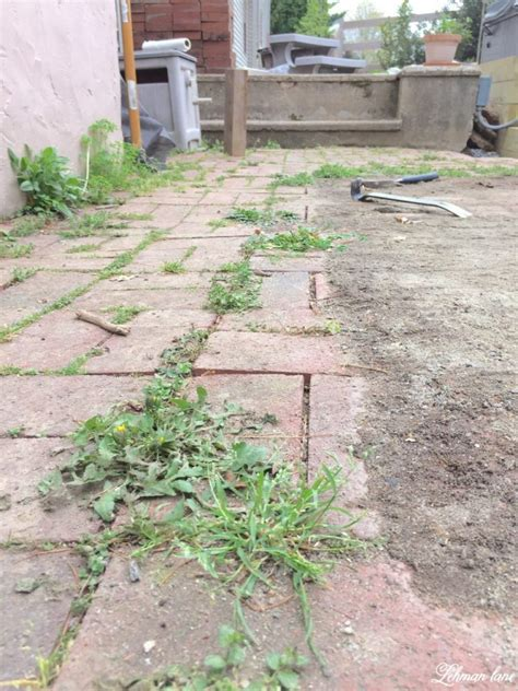 diy flagstone patio lehman