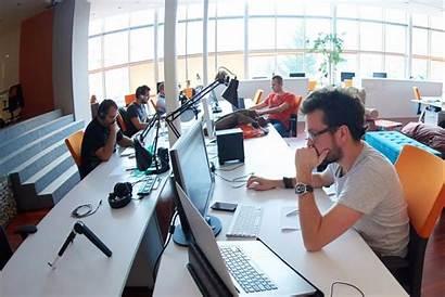 Business Company Start Startup Office Working Entrepreneur